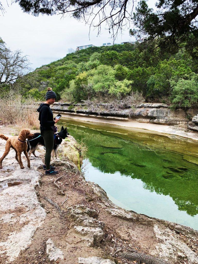 Austin dog parks